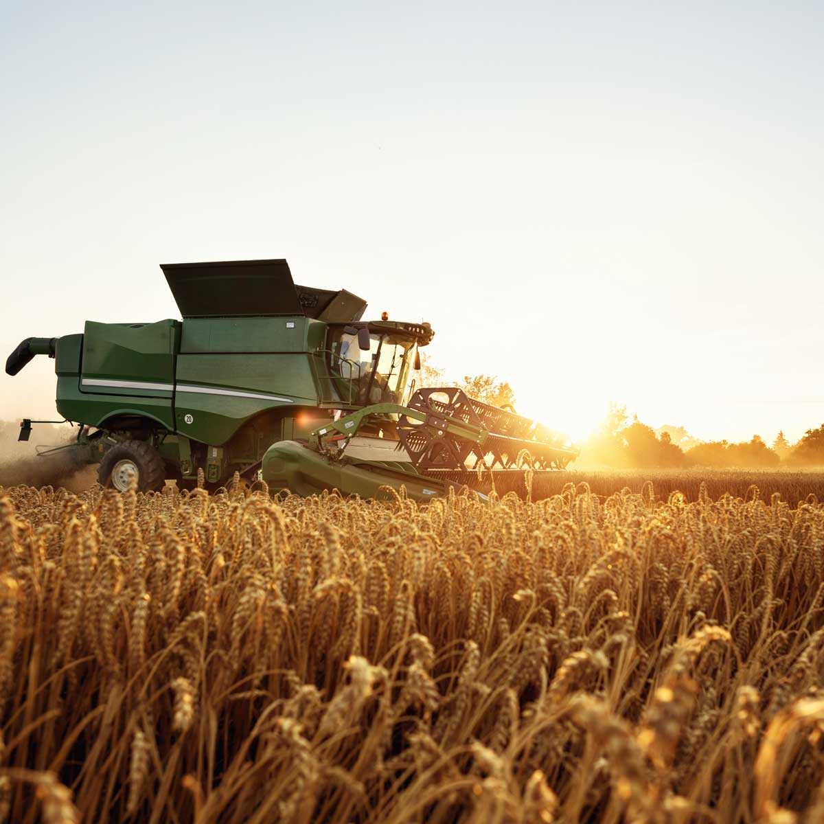 feed-and-grain-agriculture-industry-technology; tractor pictured among grain field in sunset
